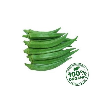 Organic Lady Finger 500 gm