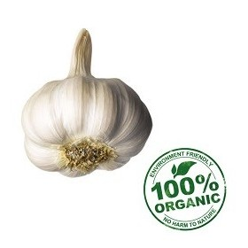 Organic Garlic 250 Gm